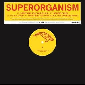 Superorganism Something for your mind
