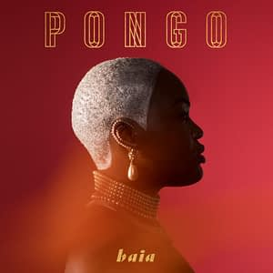 Pongo Baia